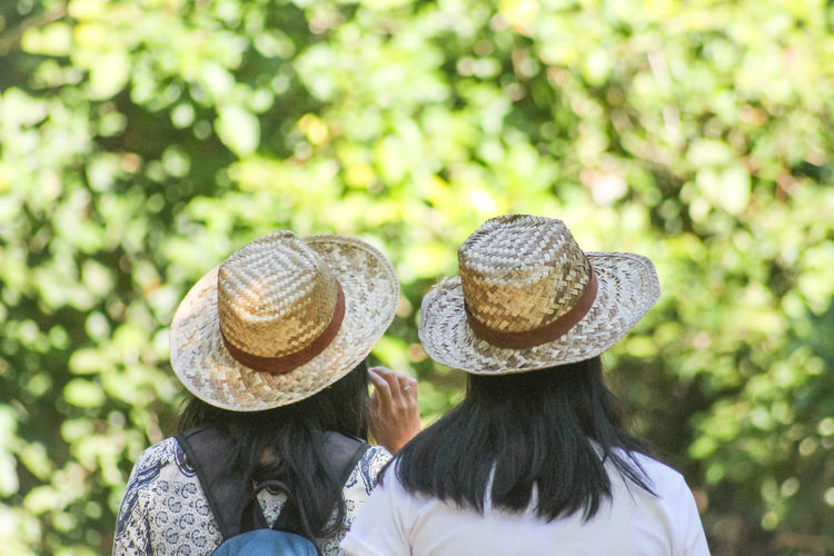 Rear view of women wearing hat against trees