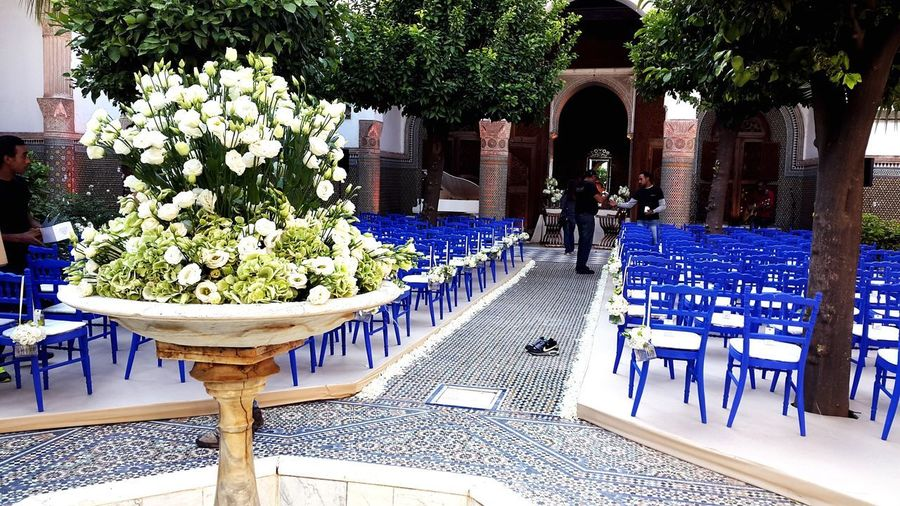 Flower Chair Luxury Table Architecture Outdoor Chair Swimming Pool No People Nature Outdoors Day Maroc Morocco Marrakech Royal Mansour Hotel Marie M. Handmade For You Handmade Flowers Bleu Majorelle Blue Flower Arrangement