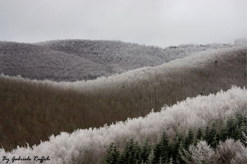 Gelo alla Secchieta Winter Landscape Mountain Instalike Natura Nature Photography Instagood Love Wild Amazing Inverno Winter Secchieta Vallombrosa Beauty In Nature Frozen Neve Ghiaccio Ice Snow Pratomagno Perspectives On Nature