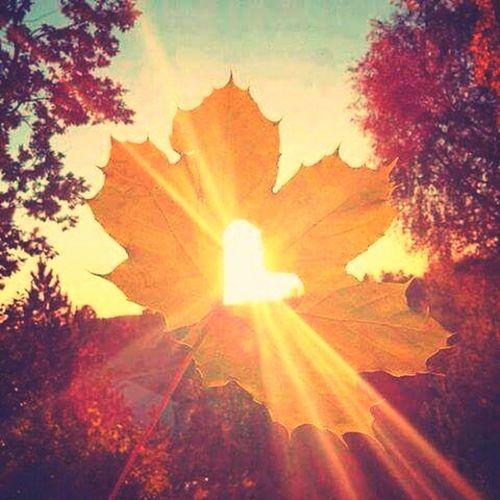 Aah o sol 😍 First Eyeem Photo