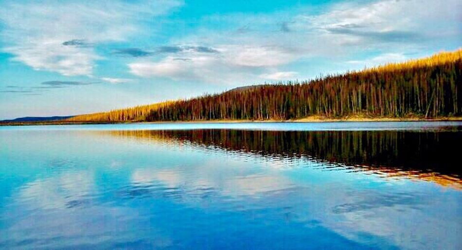 Reflection Scenics Water Beauty In Nature Sky Tranquility Tranquil Scene Nature Lake Cloud - Sky No People Tree Outdoors Forest Mountain Day First Eyeem Photo EyeEmNewHere