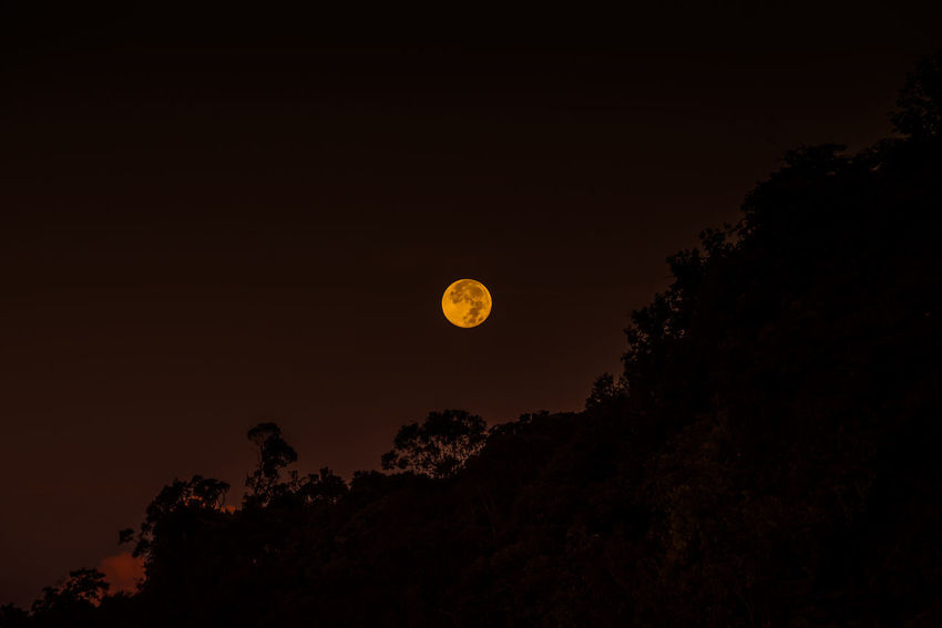 Super moon rising over forested mountains Elliptical, Bright Moon Astrology Astronomy Eclipse Landscape Moon Light Mountain Mysterious, Phenomenon Scenics Sillouette Space Sphere, Sunrise Sunrise Sunset Supermoon