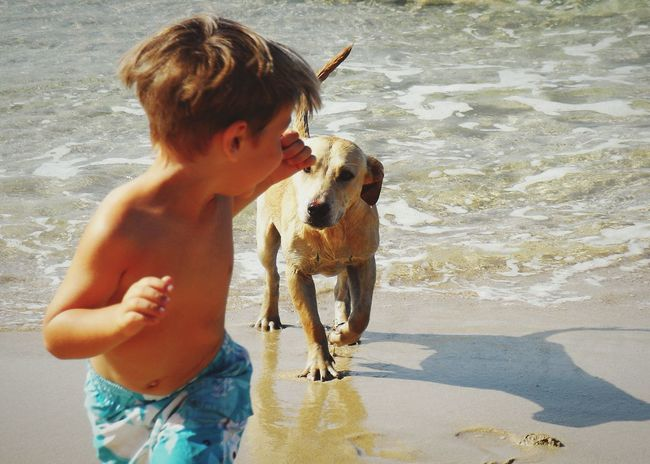Catch me if you can Seaside Playing Children Child And Dog Water_collection Summer Dogs Capturing Movement Popular Photos Pets Corner Faces Of Summer