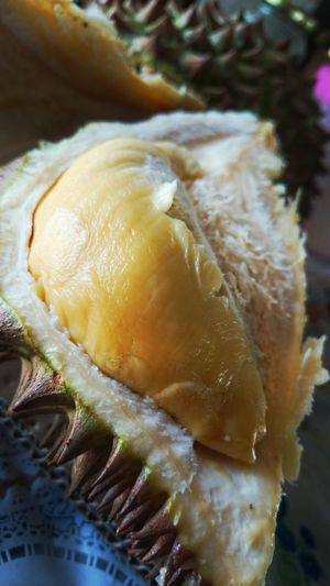 Durian Fruit Fresh Philippines Smelly Fruit Exotic Fruit Aphrodisiac Nutritious Fruit EyeEm Gallery