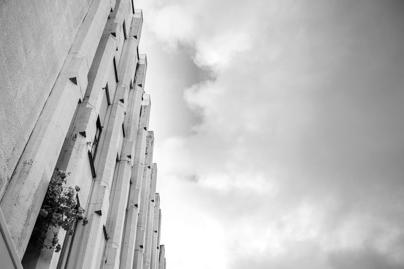 Man versus nature Architecture Building Exterior Built Structure Cloud - Sky Day Flowers Horizontal Low Angle View Monochrome Photography Nature No People Outdoors Sky