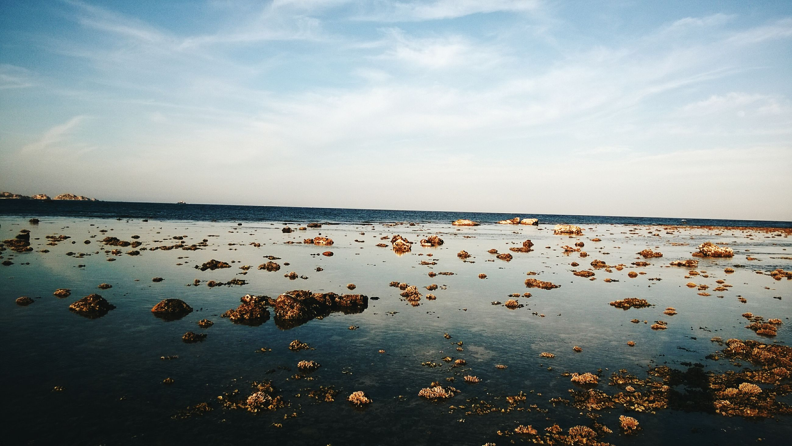 water, sky, sea, beach, cloud - sky, shore, tranquil scene, bird, tranquility, nature, scenics, beauty in nature, horizon over water, flock of birds, transportation, animal themes, nautical vessel, lake, outdoors