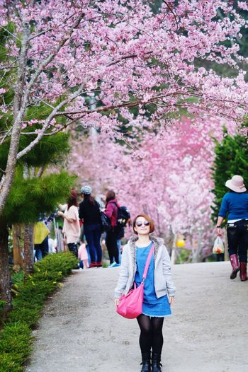 Flower Tree Walking Springtime Cherry Blossom Women People Blossom Full Length Adult Outdoors Nature Cherry Tree Beauty In Nature Real People Young Adult Adults Only Young Women Day Crowd 臺灣 Taiwan 恩愛農場