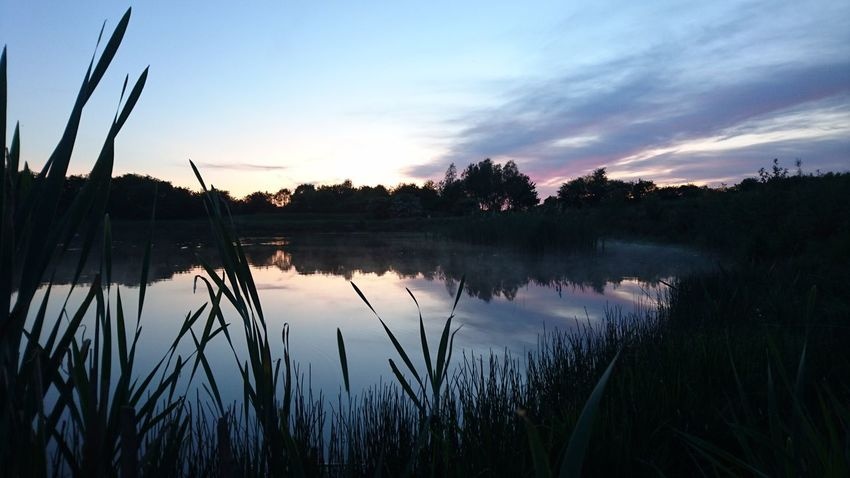 Danish Nature Fog Lake Sundown