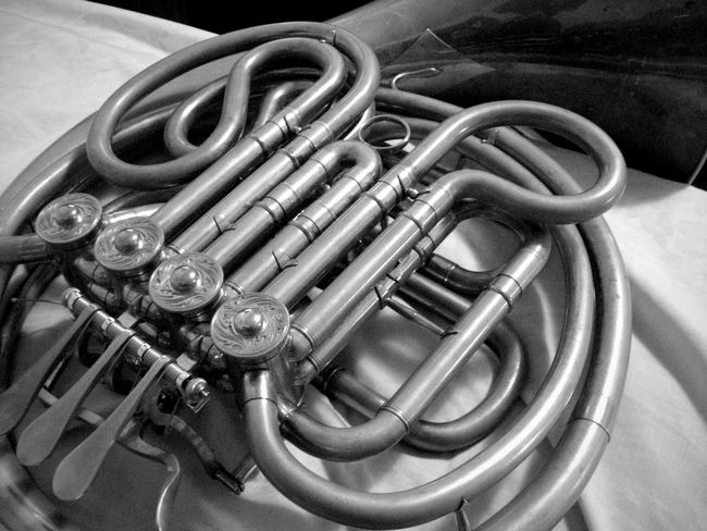 High Angle View Equipment No People Indoors  Close-up Musical Instrument French Horn Horn Music Musician Musician Life Practice Makes Perfect Rehearsal Arts Arts Culture And Entertainment Black And White Instrument Instruments Musical Instruments Brass Brass Instruments Brass Instrument