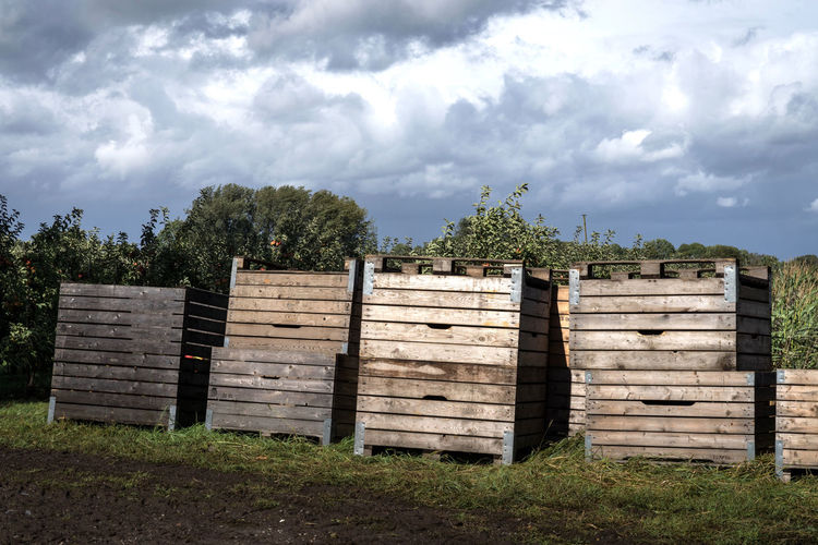 Clouds Wood Nature Sky Container Tree Autumn Cloud Apple Day Clouds And Sky Outdoors Apples Transportation Harvesting Apple Tree Harvest Harvest Time Crate No People Harvest Season Apple Trees Garden Cloud - Sky Wood - Material Harvesting The Land