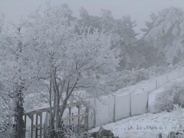 No filter needed - Dad 😉 Landscape View Snow ❄ Winter
