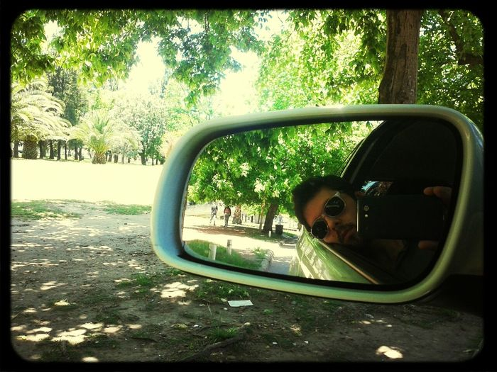 Mirror Me Exterior Summertime