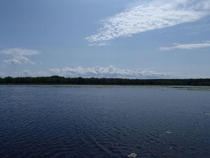 Marais de la Grande Baie (Parc national d'Oka) Swamp Sky Water Scenics - Nature Cloud - Sky Beauty In Nature Tranquil Scene Tranquility Outdoors Rippled