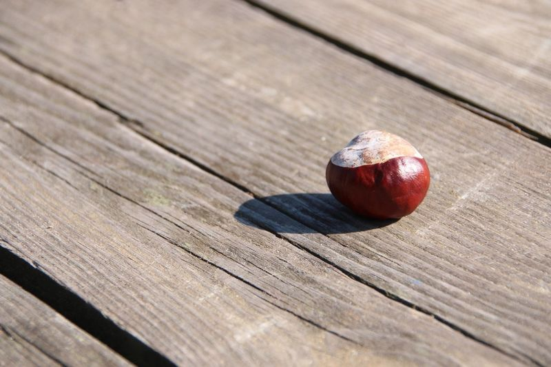 Chestnut on a wooden table