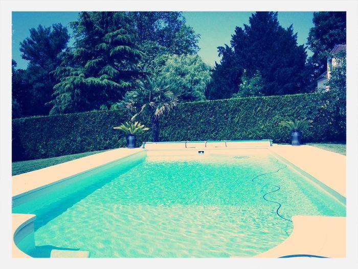 Swimming Life's Simple Pleasures... Water