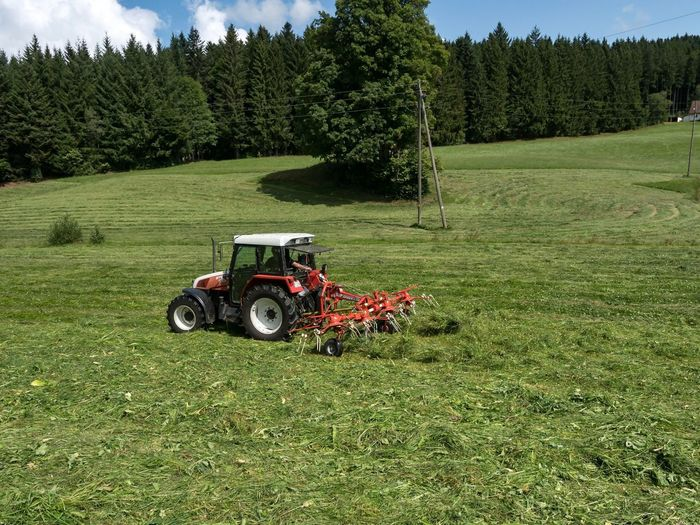 Agriculture Tree Farm Field Green Color Tractor Growth Agricultural Machinery Rural Scene Nature Transportation Grass No People Day Outdoors Sky Golf Course