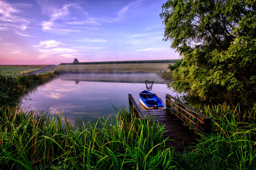 Silent morning Water Nautical Vessel Flower Lake Tree Reflection Sky Landscape Grass Plant Rowboat Boat Water Vehicle Farmland
