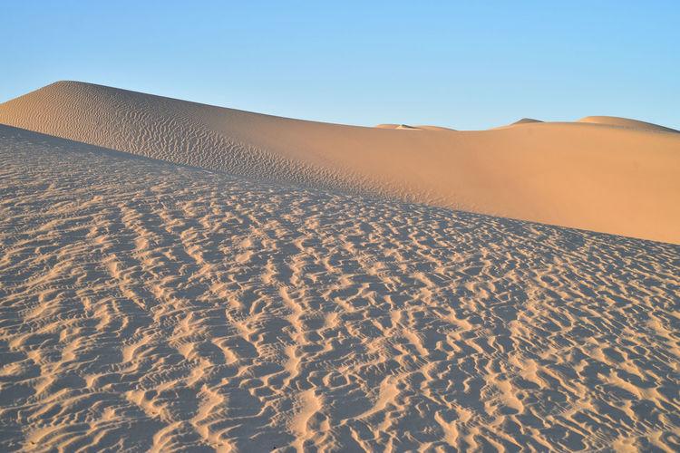 Sand dunes at imperial sand dunes recreational area, california