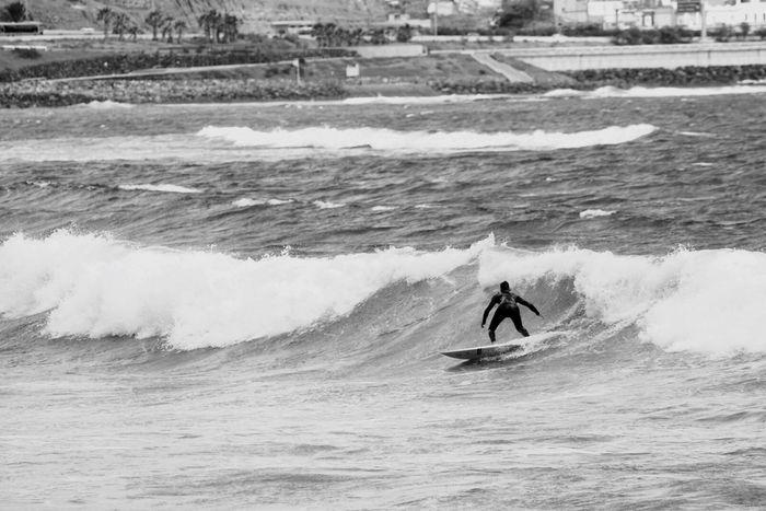 Sport Aquatic Sport Wave Motion Water Sea Surfing