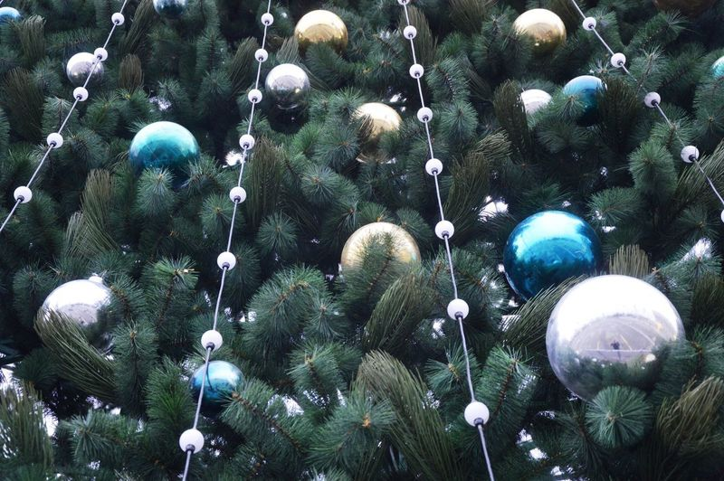 Low angle view of decorations hanging on tree