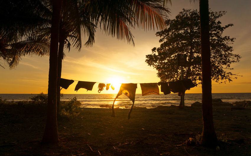 Laundry Day Coastline Costa Rica Hanging Laundry Nicoya Palm Tree Shirtless Clothes Clothes Line Evening Ocean Palm Trees Sky Sunset, Wind