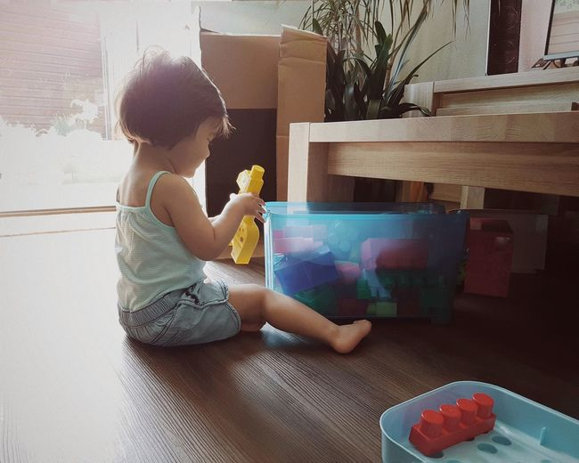 Girl Playing With Block Toys While Sitting On Hardwood Floor At Home