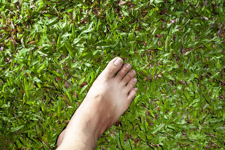 bare foot step