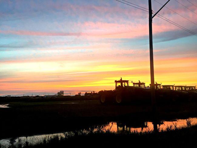 """I never saw a sunset I didn't love!"" #CantSleep #manitoba #prairies Sky Cloud - Sky Dramatic Sky Field Landscape Orange Color Outdoors Rural Scene Scenics Sky Sunset"