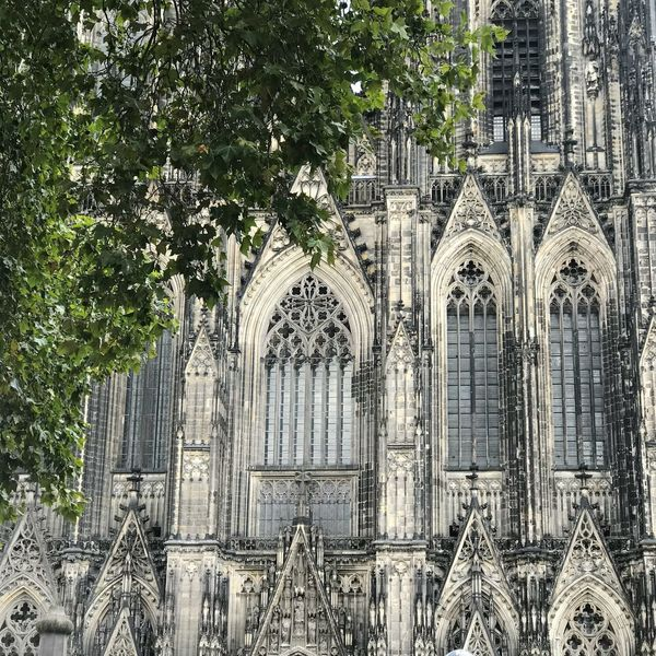 Cologne Cathedral Köln Kölner Dom Dom Unesco UNESCO World Heritage Site Colognecathedral Cologne Cathedral Cologne , Köln,  Cologne Built Structure Architecture Tree Plant Building Exterior Building No People Religion History The Past Place Of Worship Outdoors Travel Destinations Gothic Style