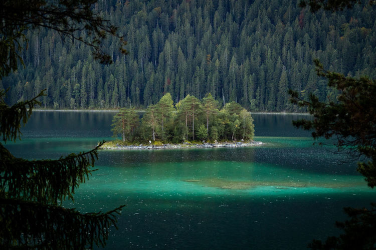 Bavaria Eibsee Tadaa Community Beauty In Nature Coniferous Tree Forest Idyllic Lake Land Landscape Mountain Nature No People Non-urban Scene Outdoors Pine Tree Pine Woodland Plant Reflection Scenics - Nature Tranquil Scene Tranquility Tree Water WoodLand