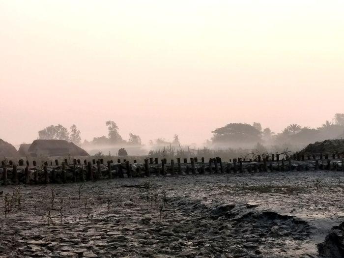 Desolate Desolation Wilderness Wilderness Village Photography Village Foggy Morning Marshland  Mangrove Life Sundarban Fog Nature Sky No People Landscape Outdoors Cold Temperature Day