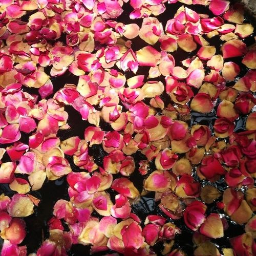 Rosé Petals Flowers Instaflower Instagardenlover Decoration Restaurant Ahmedabad Gujarat India Nexus5photography Nexus5