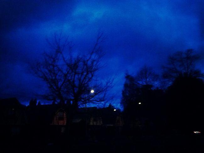 #beautiful #winter #like #like #like