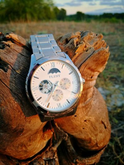 my watch wresting on a tree log (huawei p9) Tree Log Watch Clock Clock Face Time Minute Hand Roman Numeral Close-up