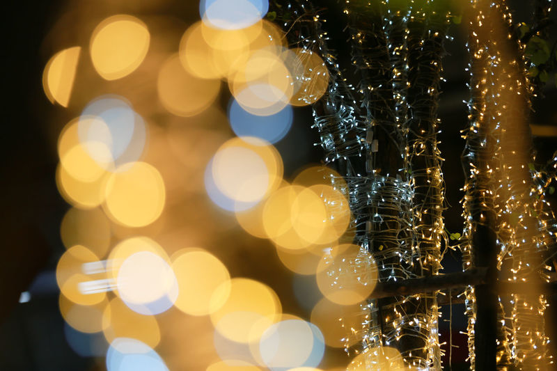 Bokeh Beauty In Nature Christmas Christmas Decoration Christmas Lights Close-up Defocused EyeEm Nature Lover Focus On Foreground Freshness Illuminated Nature Night No People Outdoors