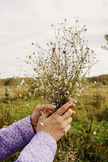 Close-up of hand holding flower on field