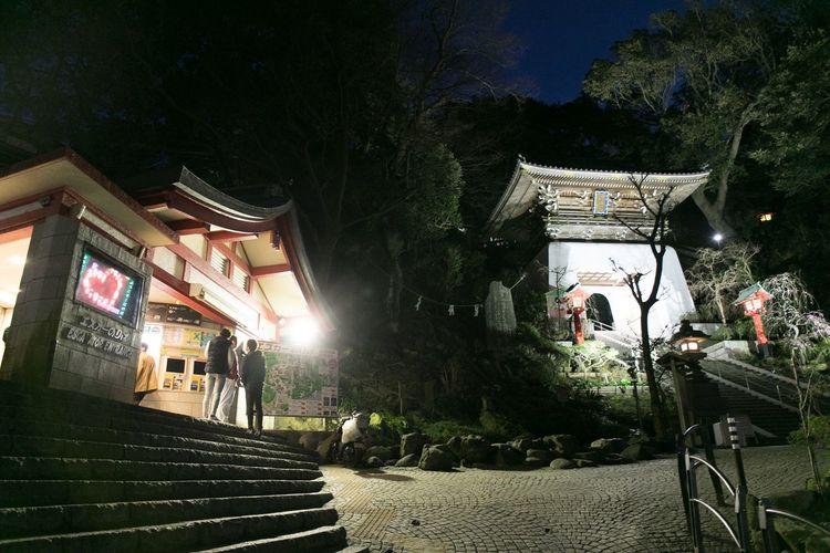 Streetphotography Japan Enoshima Architecture Built Structure Night Tree Building Exterior Outdoors Illuminated