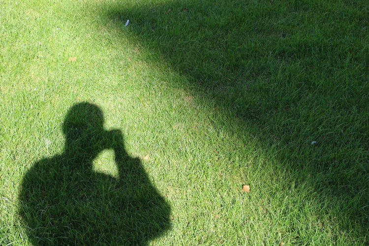 Shadow of man on grassy field