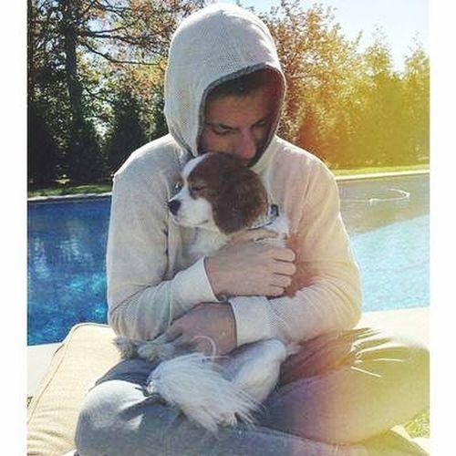 Charlieputh Brady Doglover Bestfriend Amazing Dog Cavalier  Cute OpenEdit Puthers