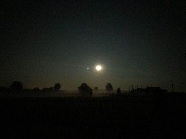 Sky Night Moon Beauty In Nature Nature No People Scenics - Nature Copy Space Tranquility Tranquil Scene