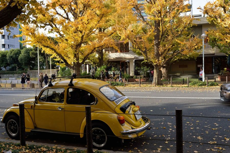 Showcase: December Street Streetphotography Streetphoto_bw Eyemphotography EyeEm Gallery EyeEm Best Edits EyeEm Best Shots Car Yellow Leaves Volkswagen Nikon Sigma35mm1.4art in Japan , Tokyo