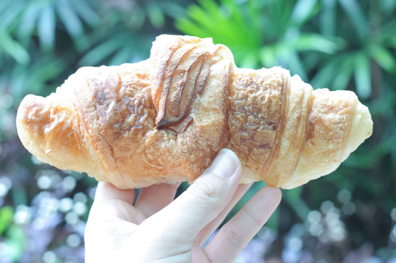 Croissant on a wooden tray Adult Adults Only Close-up Croissant Day Focus On Foreground Food Food And Drink Freshness Holding Human Body Part Human Hand One Person Outdoors People Real People