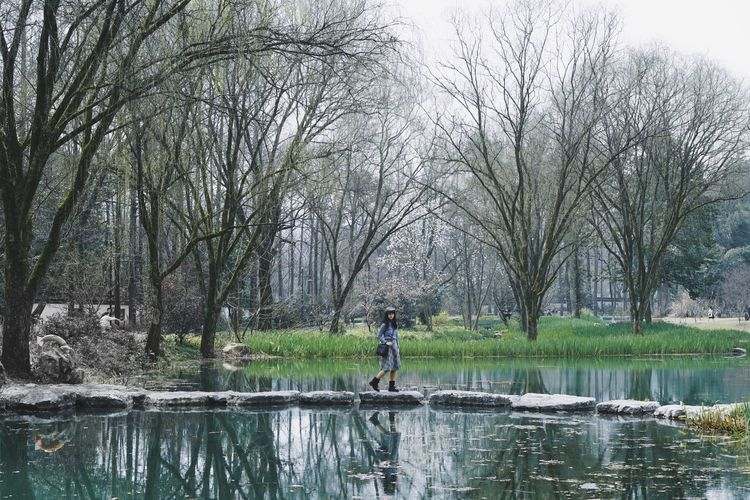 Spring Water Reflections Park Walking Landscape Tree Plant Water Nature Beauty In Nature Lake One Person Lifestyles Leisure Activity Reflection Outdoors