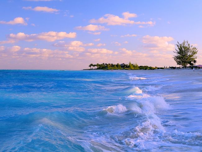 Beach Beauty In Nature Blue Caraibbean Trip Day Holiday Horizon Over Water Nature No People Outdoors Scenery Scenics Sea Sky Tranquil Scene Tranquility Tree Water Wave