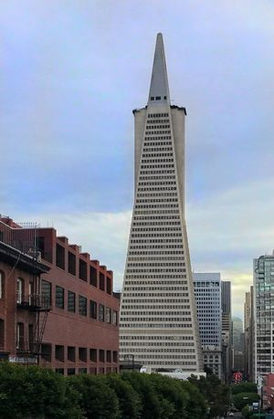 Skyline of San Francisco. Skyline Architecture Building Exterior Built Structure City Sky Outdoors No People Tower Modern Skyscraper Low Angle View Day Cloud - Sky Tree Cityscape Iconic Buildings Landmark
