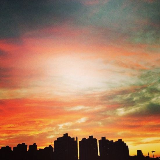 1년전쯤 이었나..? 한강 산책하다가... Photo by Iphone 6
