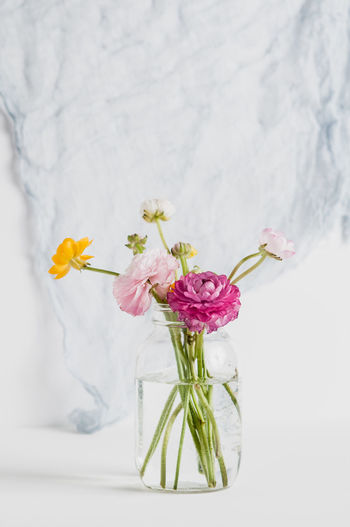 Airy Copy Space Copyspace Feminine  Floral Flower Flower Arrangement Flower Head Fragility Freshness Light No People Pretty Ranunculus Simple Simplicity Soft Styled Stock