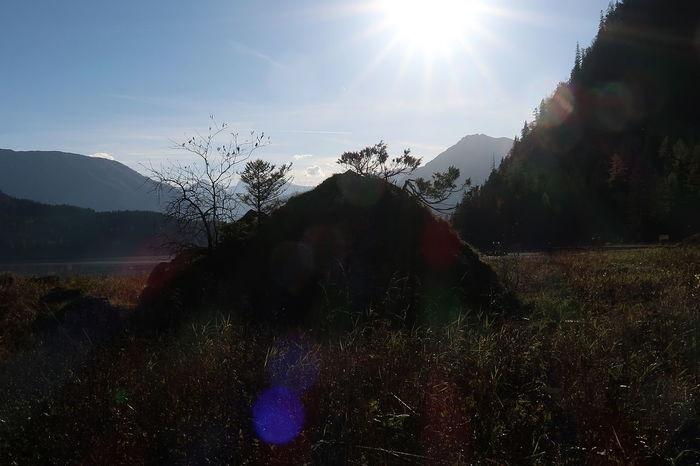 Altaussee Austria Autumn EyeEmNewHere Lost In The Landscape Beauty In Nature Day Grass Lake Landscape Lens Flare Mountain Nature No People Outdoors Scenics Sky Sun Sunbeam Sunlight Tranquil Scene Tranquility Tree Perspectives On Nature