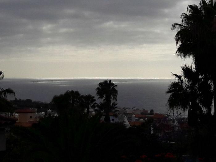 Ocean View Last