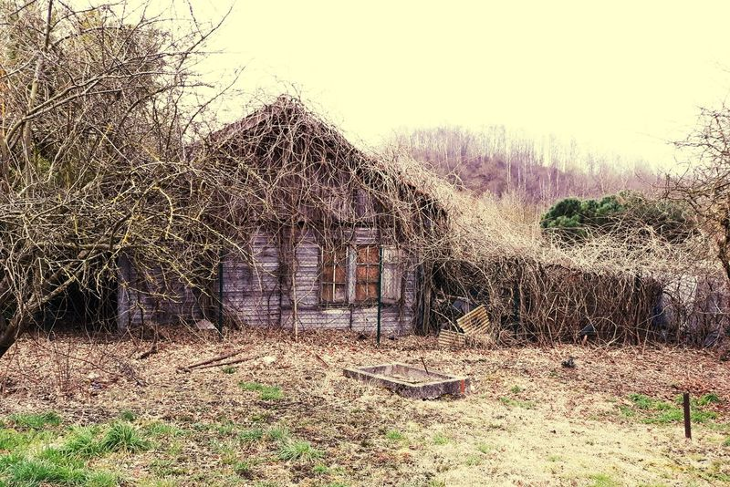 EyeEm Best Shots Photoismylife Cold Cold Winter ❄⛄ Photo Is My Hobby Beauty In Nature Beauty Real Life Faillite Of Belgium Abandoned EyeEm Selects Abandoned Places Abandoned Buildings